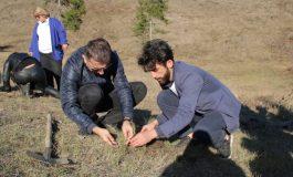 ბორჯომის ხეობაში ხანძრით დაზიანებული ტყის აღდგენის სამუშაოებში ბათუმის სახელმწიფო უნივერსიტეტის სპეციალისტები ჩაერთვნენ